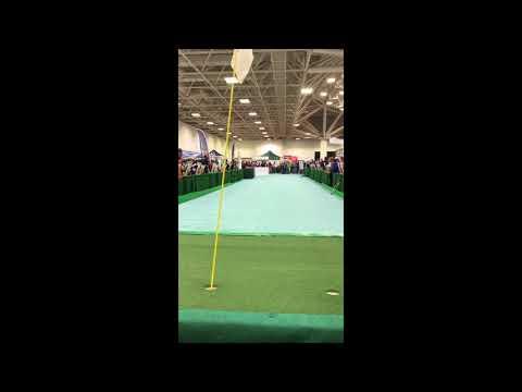Golfer drains 125 foot putt to win $100,000 at the Minnesota Golf Show (2018)