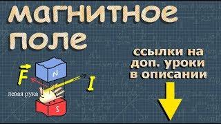МАГНИТНОЕ ПОЛЕ 9 класс | Романов