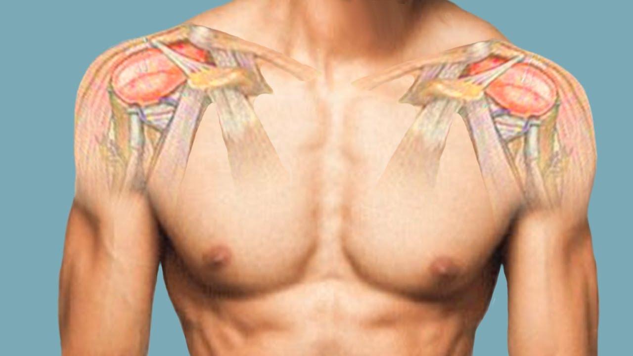 Дмитрий калашников плечевой сустав суставы в период трансмутации тел