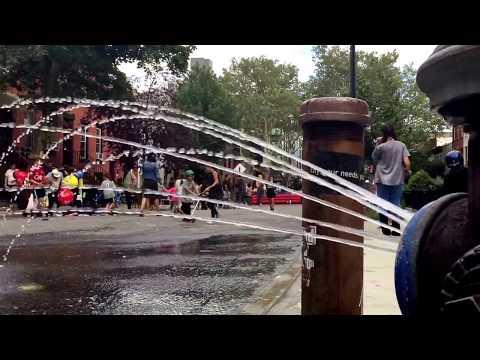 block party in Carroll Gardens, Brooklyn, New York (9-9-17)