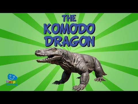 The Komodo Dragon | Educational Video for Kids.