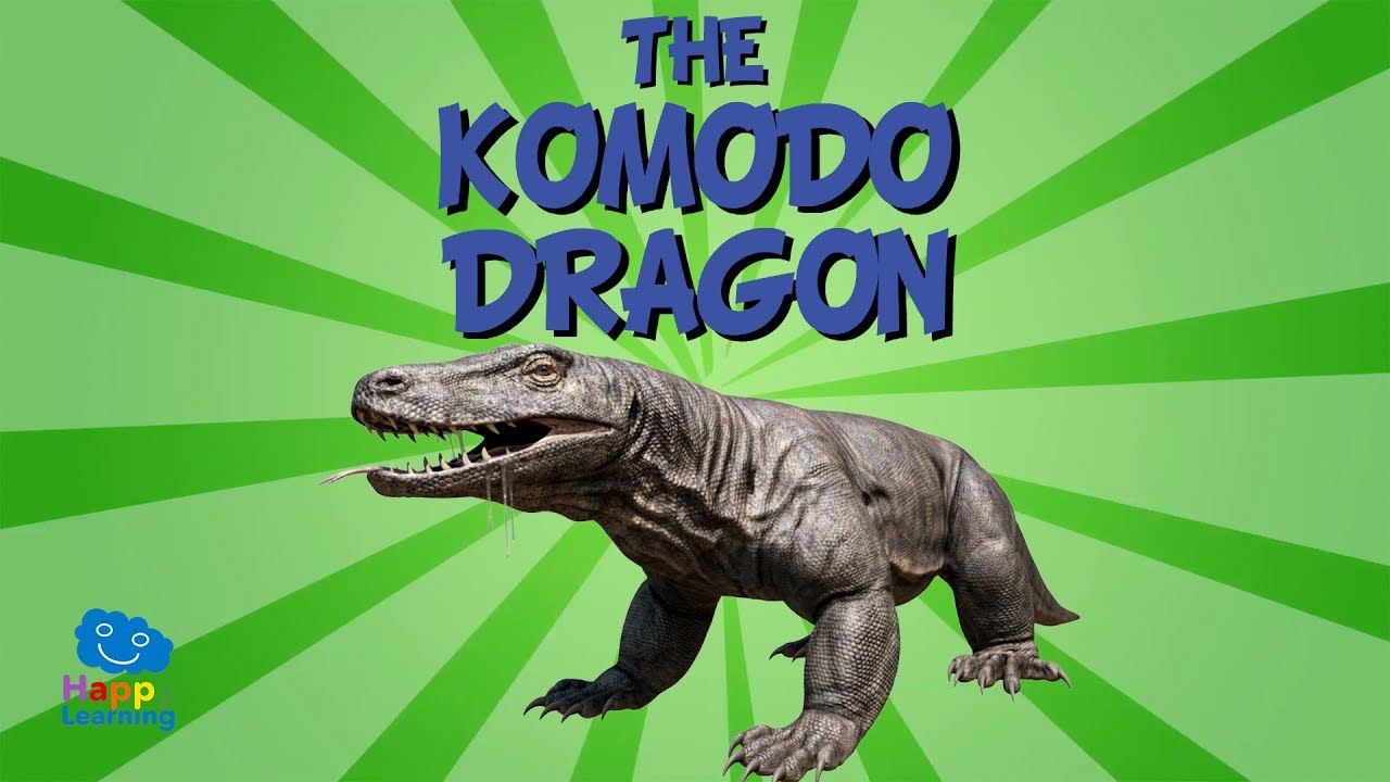 the komodo dragon educational video for kids youtube