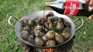 Delicious Field Snail Cooking With Coca Cola / Kdeb Cooking