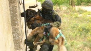 Working Dogs Exclusive Courses By Magen K9 In Israel