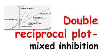Double reciprocal plot for mixed inhibition