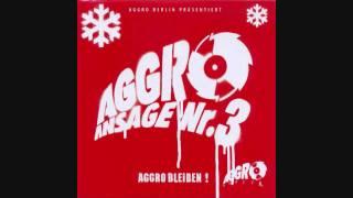 Aggro Berlin - Live Outro (HD)