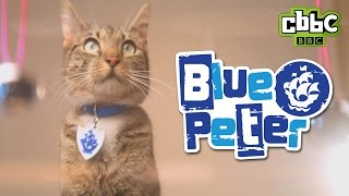 CBBC: Blue Peter Badge - Get Yours!