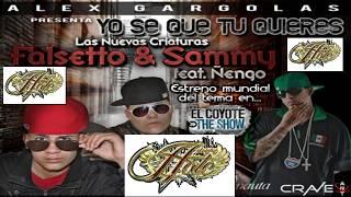Yo se Que tu Quieres Extend  Dj Hate FMC -  Falsetto & Sammy Ft. Ñengo Flow [HD] ORIGINAL !!!