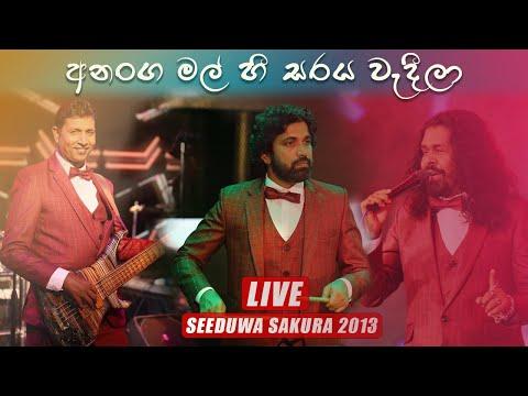 Ananga Mal HEE Seeduwa Sakura Colombo 2013