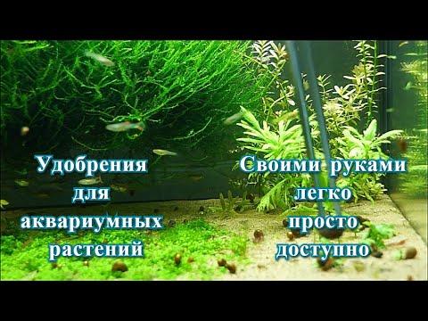 Вопрос: Микро удобрения для аквариумных растений своими руками, как готовить?