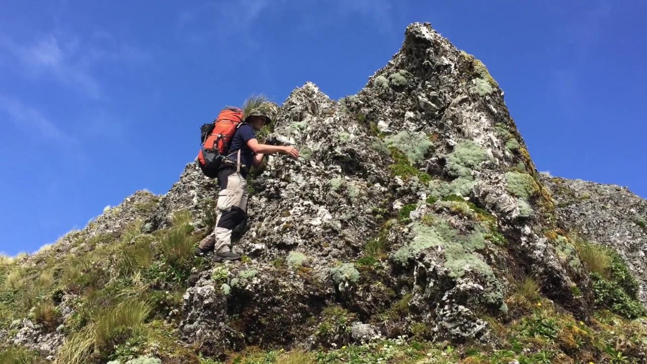 Mitre Peak via Cows Creek and Tarn Ridge circuit, Tararua Range, New Zealand
