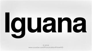 How To Pronounce Iguana | Pronunciation Primer HD