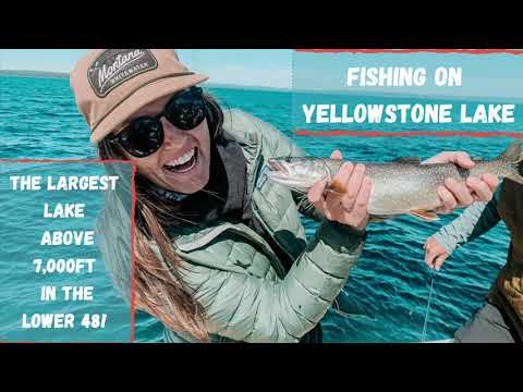 Fishing on YELLOWSTONE LAKE | Yellowstone National Park | fishing vlog