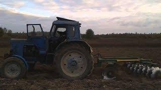 Как подготовить землю для посадки смородины|СМОРОДИНА|8|