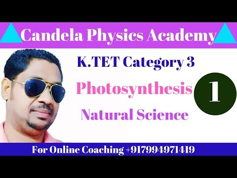k.tet-category-3||natural-science||photosynthesis||part-1
