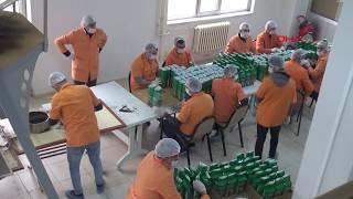 Cezaevinde Sayılı gün çayı üretiliyor yok satıyor