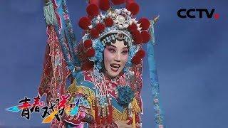 《青春戏苑》 20190628 戏韵芬芳| CCTV戏曲