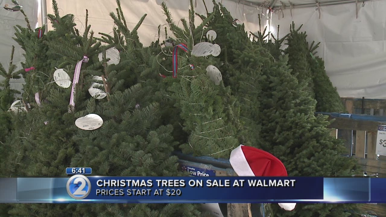 christmas trees on sale before thanksgiving at walmart
