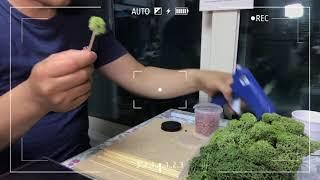 천연제습식물 스칸디아모스 만들기