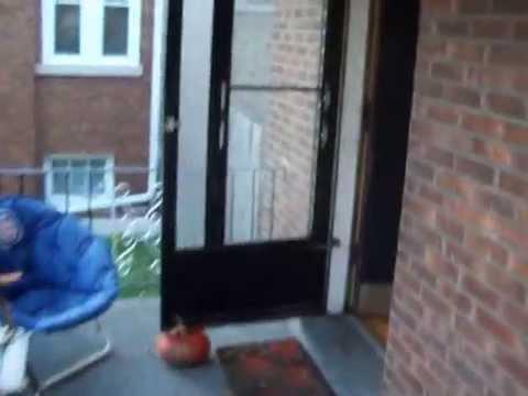 Portage Park Chicago Apartment Quantum Apartments Com