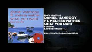 Daniel Wanrooy featuring Melissa Mathes - What You Want