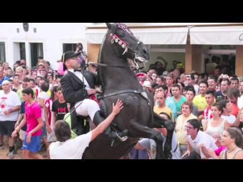 Sant Martí 2014: Es meu Sant Martí
