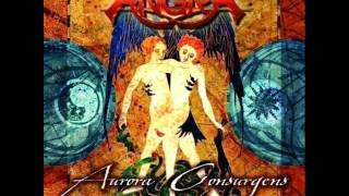 Angra - Ego Painted Grey - New Version 2012