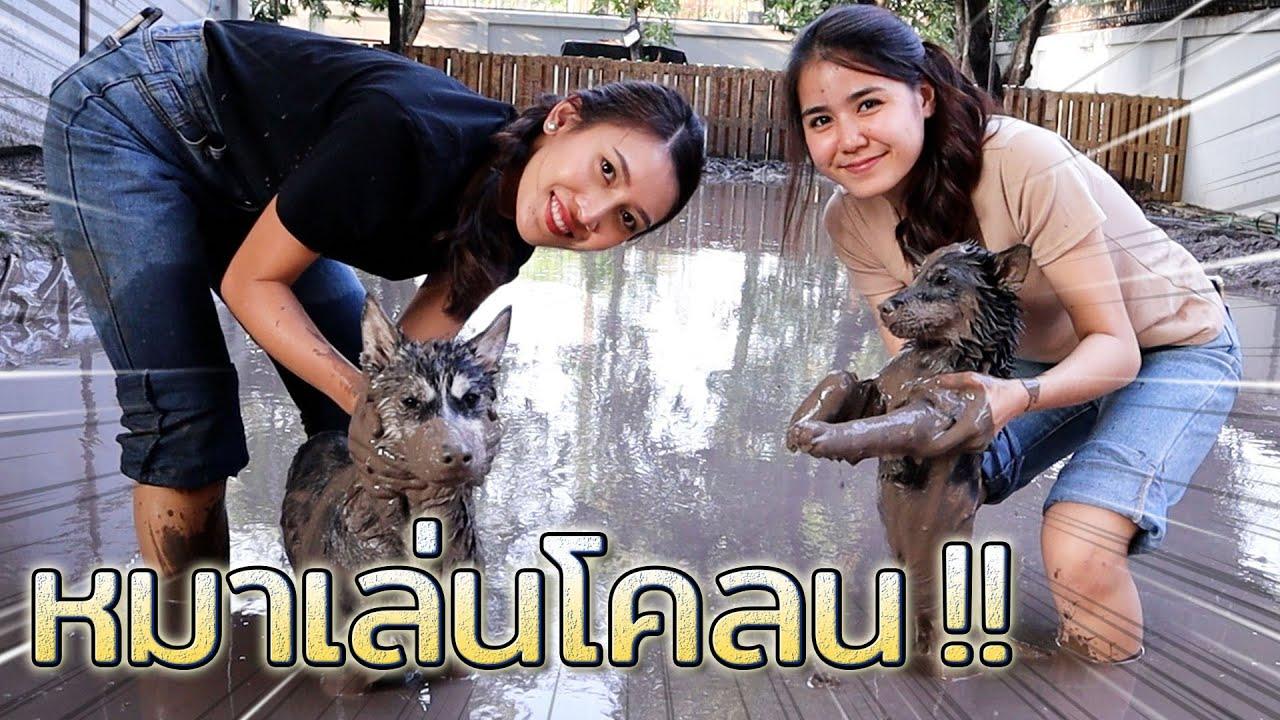 หมาตกบ่อโคลน !! ตัวดำปี๋เลย มิงุ เออเรอร์  พี่ดรีมพาหมาเที่ยว - DING DONG DAD
