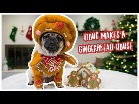 Doug Builds a Gingerbread House!