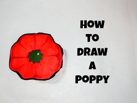 How to draw a simple poppy youtube how to draw a simple poppy mightylinksfo