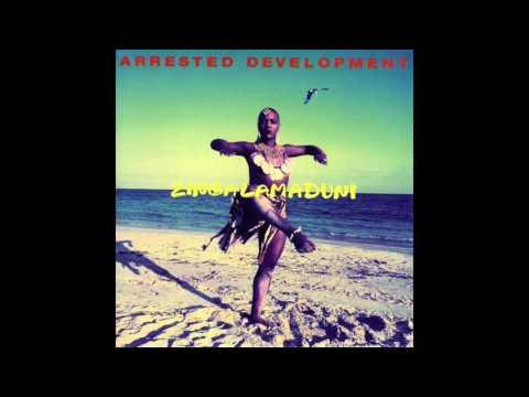 Arrested Development – Shell - Zingalamaduni