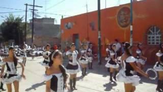 NO PUEDO DEJAR DE VERTE- ALACRANES MARCHING BAND