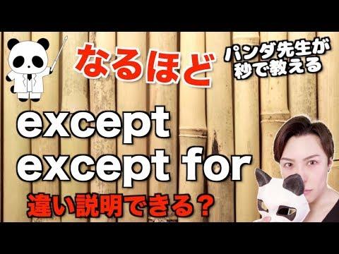 """パンダでもわかる """"except"""" と """"except for"""" の違い"""