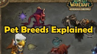 What Are Pet Breeds? -wow Battle Pets-