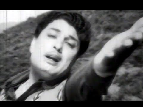 Poonaley - MGR - Neethikku Pin Paasam Tamil Song