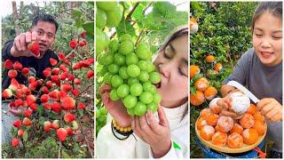 😍Farm Fresh Ninja Frขit   Tik Tok China   (Oddly Satisfying Fruit Ninja) #56