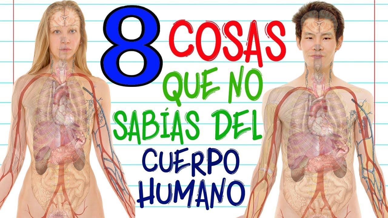 8 cosas que NO SABÍAS del Cuerpo Humano [TOP]   RANK  