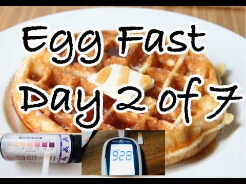egg-fast-keto-diet-|-keto-recipes-|-ketone-level-for-ketosis-|-how-to-lose-weight-fast