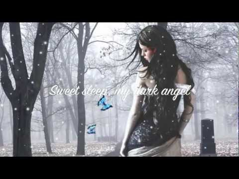 Evanescence~ My Heart Is Broken (lyrics)