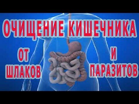★ОЧИЩЕНИЕ КИШЕЧНИКА от шлаков и паразитов. Подготовка к очищению. Способы очищения кишечника.