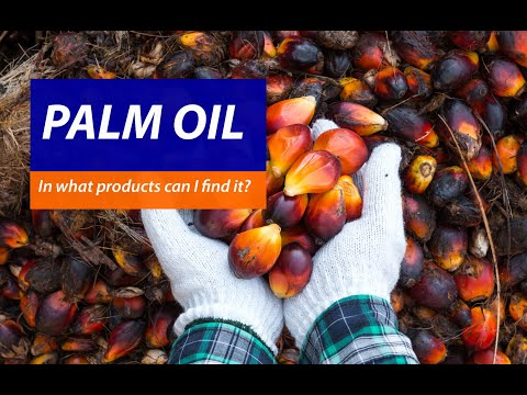 Palm Oil: In Which Products Can I Find It?