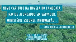 Camboatá tem novo capítulo e mais notícias socioambientais - VERDE MAR #96