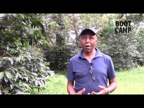 Interview with Ethiopian Coffee farmer