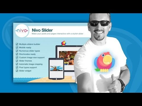 WordPress Slider Plugin Free: How To Get Started With Nivo Slider