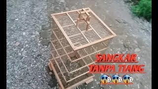 Download Video CARA MEMBUAT SAGKAR BURUNG TANPA TIANG!!!! 😱!!!! MP3 3GP MP4
