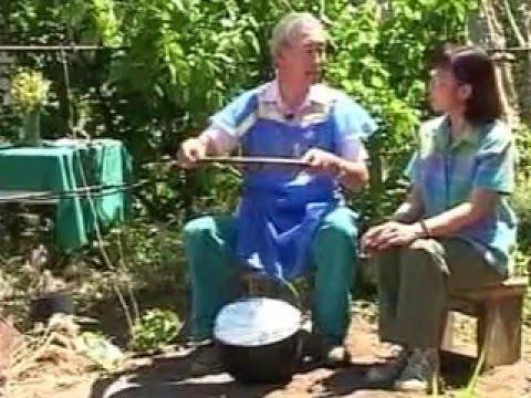 Как приготовить сырный соус к курице