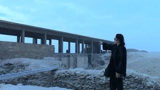 «ثوار الآثار»: أين علم المتاحف من تشويه المتحف المصرى؟! (فيديو)