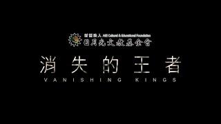消失的王者 首部曲:沙漠雄獅【聚焦全世界】 舒夢蘭 Vanishing Kings I  Lions of the Namib Desert