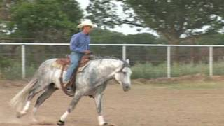 Ichibon BMF and Steve Kutie from Kutie Performance Horses. Bridless Reining Horse