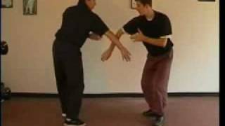 Tai Chi Yang Style Fighting Form